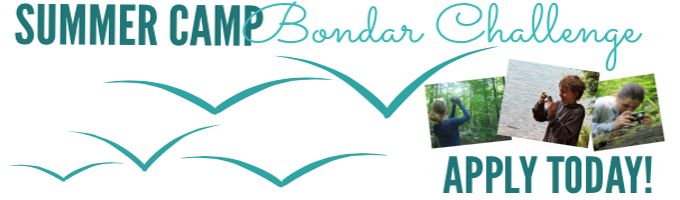 Summer Camp Bondar Challenge